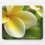 frangipani mouse pad