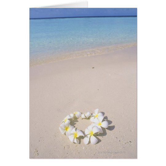 Frangipani on the beach card
