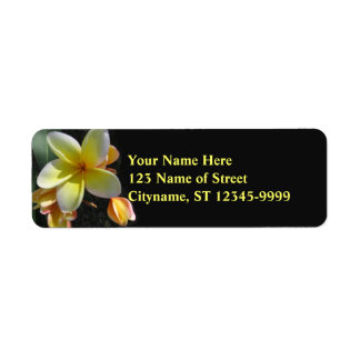 Frangipani Return Address Labels