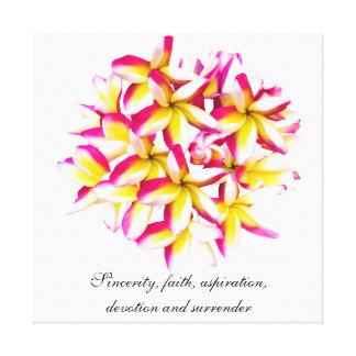 Frangipani temple flower canvas print