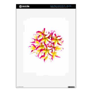 Frangipani Temple flower iPad 3 Decal