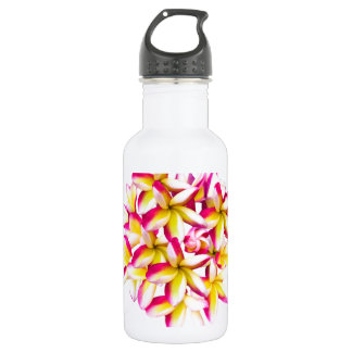 Frangipani Temple flower Stainless Steel Water Bottle