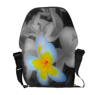 Frangipani with a Splash of Color Messenger Bag