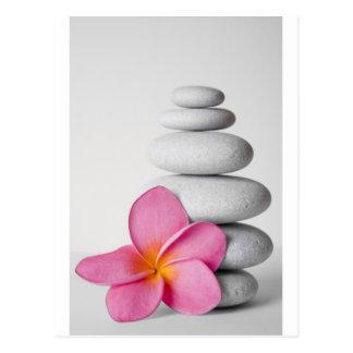 Frangipani Zen Post Card