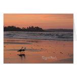 higgins beach, low tide, maine, seagulls, pink