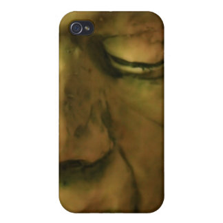 Frankenstein Mask  Case For iPhone 4