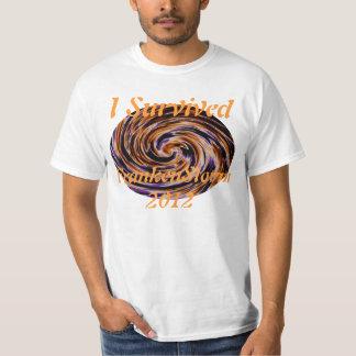 FrankenStorm 2012 Survivor! T-Shirt