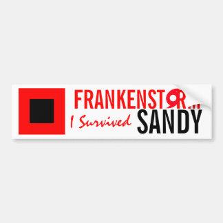 Frankenstorm Sandy Hurricane Bumper Sticker