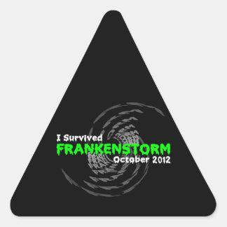 Frankenstorm Triangle Sticker