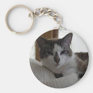 Frankie 4 key chains