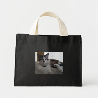 Frankie 5 canvas bags