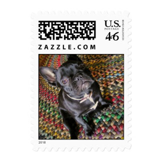 Frankie the Frenchie Postage Stamps