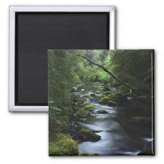 Franklin-Gordon Wild Rivers National Park, 2 Inch Square Magnet