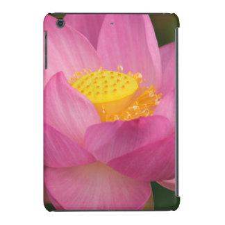 Franklin NC, jardín del agua de Perry, Lotus 2 Funda De iPad Mini