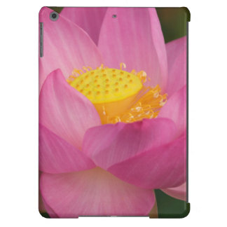 Franklin NC, jardín del agua de Perry, Lotus 2 Funda Para iPad Air