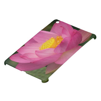 Franklin NC, Perry's Water Garden, Lotus 2 Case For The iPad Mini