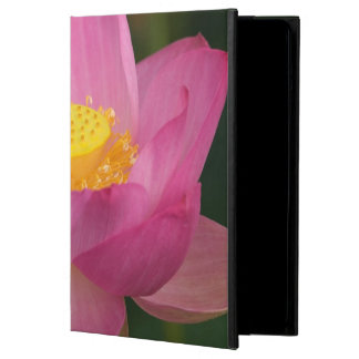 Franklin NC, Perry's Water Garden, Lotus 2 Cover For iPad Air