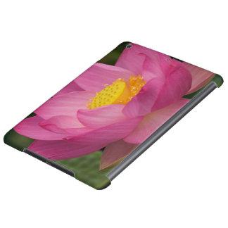 Franklin NC, Perry's Water Garden, Lotus 2 iPad Air Case