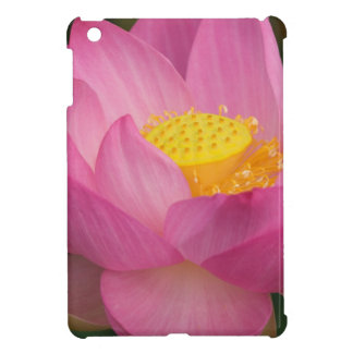Franklin NC, Perry's Water Garden, Lotus 2 iPad Mini Cases