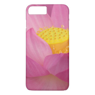 Franklin NC, Perry's Water Garden, Lotus 2 iPhone 8 Plus/7 Plus Case