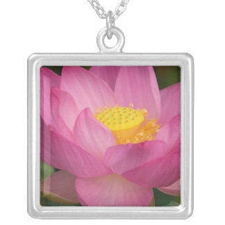 Franklin NC, Perry's Water Garden, Lotus 2 Silver Plated Necklace