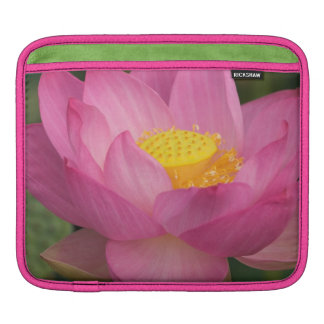 Franklin NC, Perry's Water Garden, Lotus 2 Sleeve For iPads