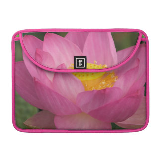Franklin NC, Perry's Water Garden, Lotus 2 Sleeve For MacBook Pro