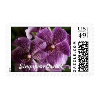 Franqueo a juego de la orquídea púrpura de Singapu