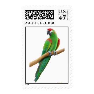 Franqueo afrontado rojo del Macaw Sellos Postales