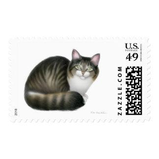 Franqueo amistoso del gato del gatito estampillas