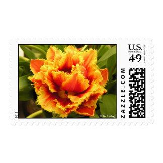 Franqueo anaranjado del tulipán sello postal