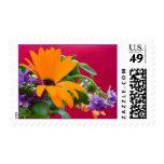 Franqueo anaranjado y púrpura de la flor del tema