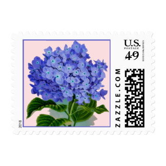 Franqueo azul de la flor del Hydrangea del vintage