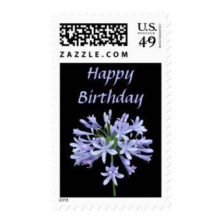Franqueo azul del cumpleaños del negro del Agapant