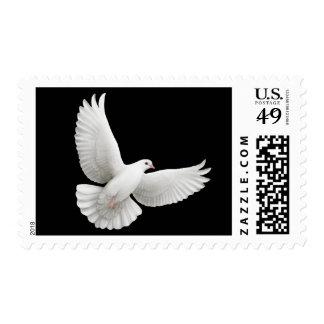 Franqueo blanco de la paloma de la paz