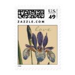 Franqueo botánico del amor de la flor del iris