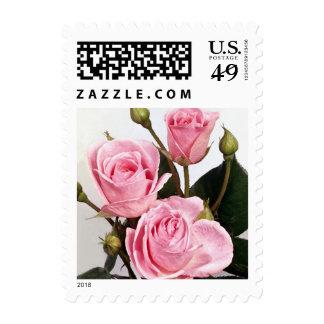 Franqueo color de rosa elegante 216