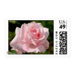 Franqueo color de rosa rosado sellos