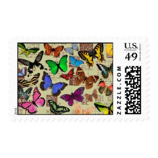 Franqueo colorido de las mariposas timbre postal
