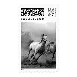 Franqueo corriente del caballo sello postal