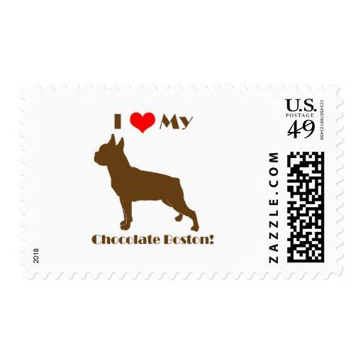 Franqueo de Boston Terrier del chocolate