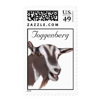 Franqueo de la cabra de la lechería de Toggenberg