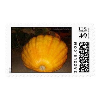 Franqueo de la calabaza gigante sello postal