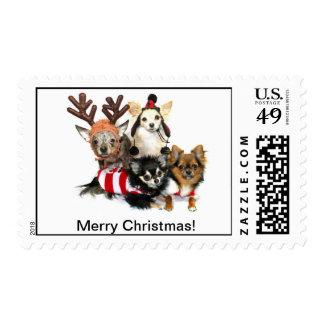 Franqueo de la chihuahua de las Felices Navidad