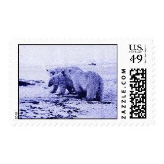 Franqueo de la familia de tres osos