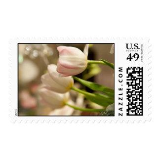Franqueo de la flor del tulipán sello