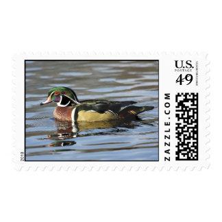 Franqueo de la fotografía del pato de madera timbres postales