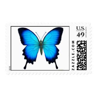 Franqueo de la mariposa de Papilio Ulises Sellos Postales
