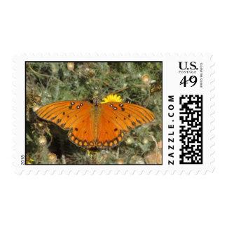 Franqueo de la mariposa del Fritillary del golfo