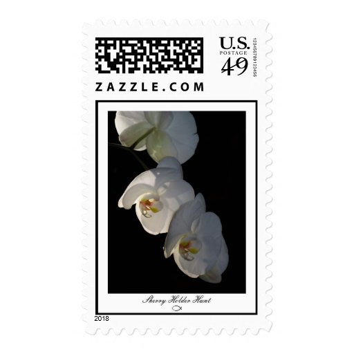 Franqueo de la orquídea 002